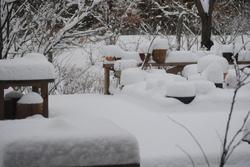 2019雪・10.jpg