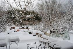 2019雪・7.jpg